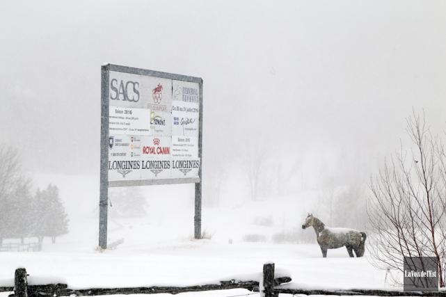 Le site équestre olympique de Bromont pourrait être... (Janick Marois, La Voix de l'Est)