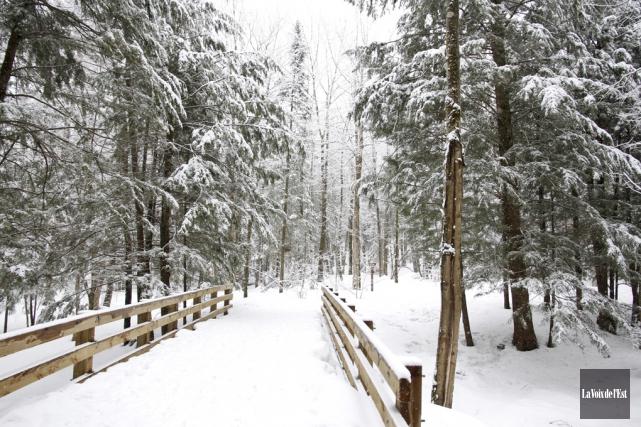 La réserve naturelle du Canton-de-Shefford, qui inclut le... (Julie Catudal, archives La Voix de l'Est)