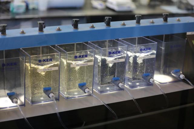 Le traitement de l'eau potable réduit environ de... (Photo Martin Chamberland, La Presse)