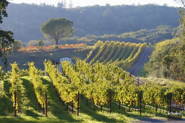 Napa Valley... (Archives Le Soleil, Marc Tremlay)