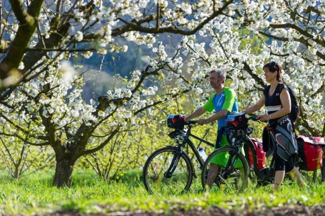 Le printemps sur la ViaRhôna... (Photo tirée du compte Facebook de la ViaRhôna)