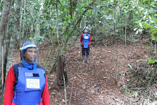 Le lien entre la présence de mines antipersonnel... (Photo Agence France-Presse/Zimagenes)
