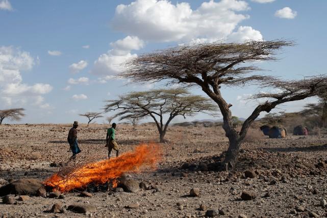 Comme plusieurs pays d'Afrique de l'Est, le Kenya... (Photo Goran Tomasevic, archives REUTERS)