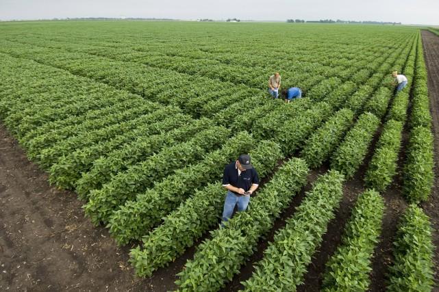 Un centre de recherche de Monsanto en Illinois.... (La Presse NYT)