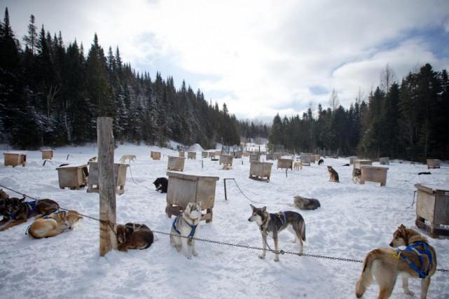 Le Centre d'activités nature Kanatha-Aki, àVal-des-Lacs, dans les... (Photo David Boily, La Presse)