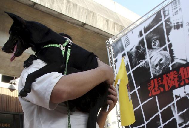 La consommation de viande de chien et de... (AP, Chiang Ying-ying)