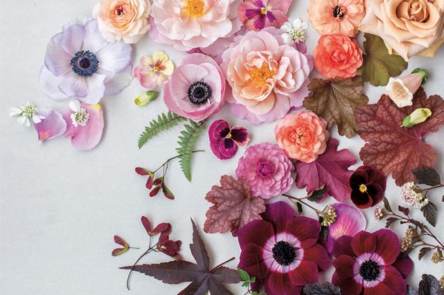 Pour harmoniser les fleurs d'un bouquet, Carmel aime... (Photo de Julia C. Vona, tirée de L'atelier des bouquets)