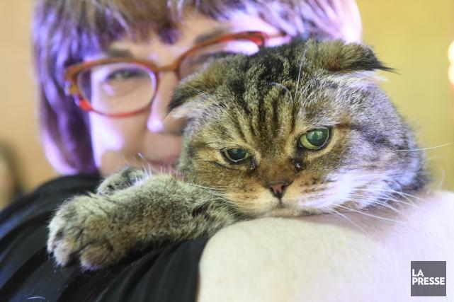 Hortense, 21 ans, estaveugle, mais autrement, elle est... (PHOTO BERNARD BRAULT, LA PRESSE)