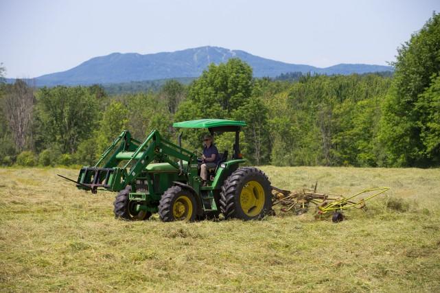 Le secteur agroalimentaire québécois apporte environ 22 milliards... (Archives, La Presse)