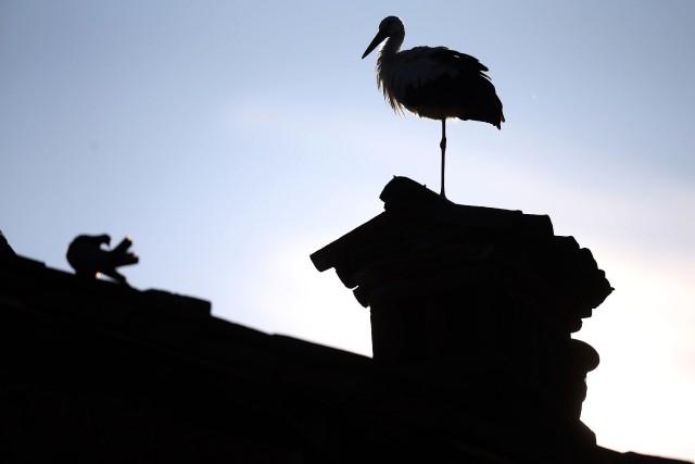 Le plan d'action vise notamment à moderniser deux... (PHOTO MARCO BERTORELLO, ARCHIVES AFP)