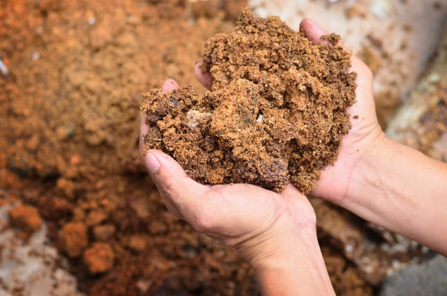 15330986 - material for compost on farmer hand... (123RF)