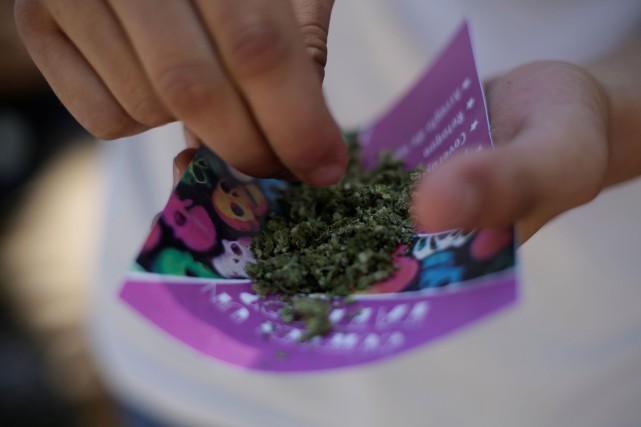 La loi permettra de cultiver, récolter, préparer, acheter,... (Photo Jose Luis Gonzalez, REUTERS)