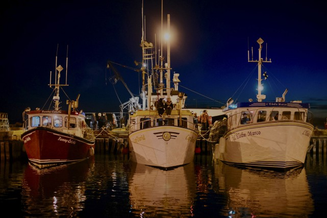 Les 325 homardiers des Îles-de-la-Madeleine demeureront à quai... (fournie par le Comité de la Mise à l'eau des cages)
