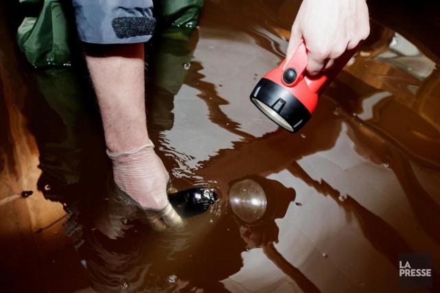 Outre les coliformes fécaux, l'eau contaminée peut véhiculer... (PHOTO ALAIN ROBERGE, LA PRESSE)