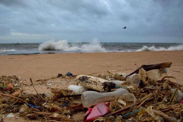 L'île Henderson est déserte et est située à... (PHOTOGemunu Amarasinghe, Archives Associated Press)