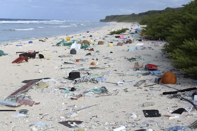 Des chercheurs affirment que la densité de déchets... (AP, Jennifer Lavers)