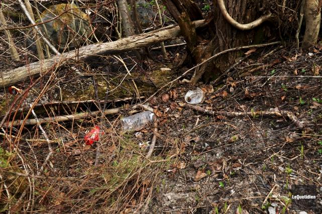 Bouteilles de plastique et canettes jonchent le sentier... (Photo Le Quotidien, Yohann Gasse)