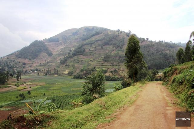 Le village Twa de Makanga, à la frontière... (La Tribune, Jonathan Custeau)