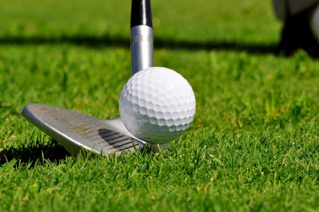 Des amateurs de golf et des politiciens ont... (123RF)