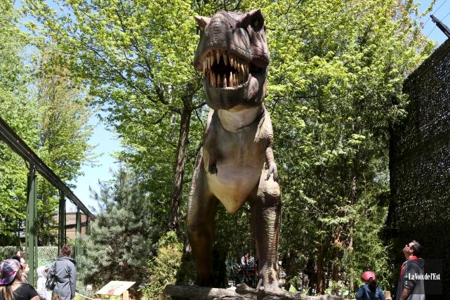 Les gigantesques reptiles préhistoriques ne sont pas seulement... (Julie Catudal, La Voix de l'Est)