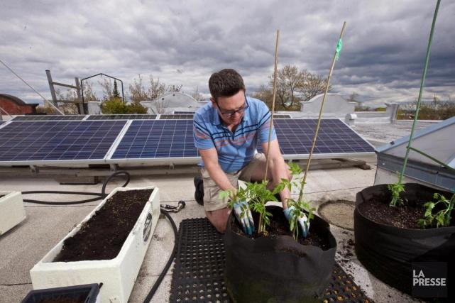 Un nombre grandissant de jardiniers amateurs prend plaisir... (Photo André Pichette, La Presse)