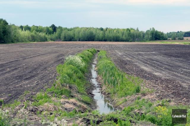 Les foss s agricoles vis s pour r duire la pollution des for Haute yamaska