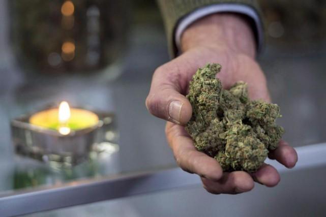 À l'aube de la légalisation de la marijuana,... (PhotoMarcio Jose Sanchez, Archives Associated Press)