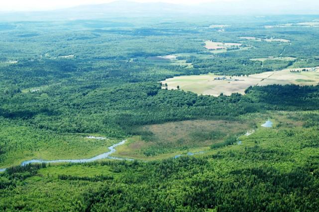 D'une superficie de 21,1 hectares, la réserve naturelle... (fournie par Canards Illimités et GéoMont)