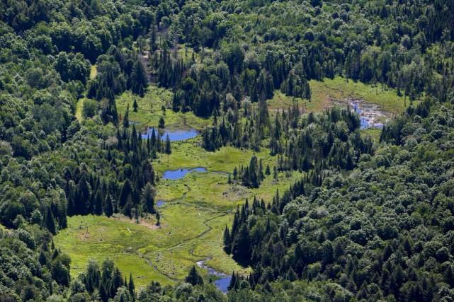 Conservation de la nature Canada (CNC) a annoncé... (Courtoisie, Mike Dembeck)