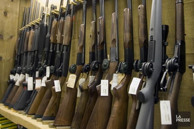 Le registre fédéral des armes d'épaule a été... (PHOTO ANDRÉ PICHETTE, ARCHIVES LA PRESSE)