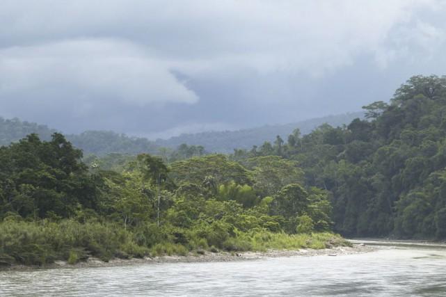 Construire les 428barrages hydro-électriques projetés dans le bassin amazonien... (Photo Frédérique Sauvée, archives collaboration spéciale)