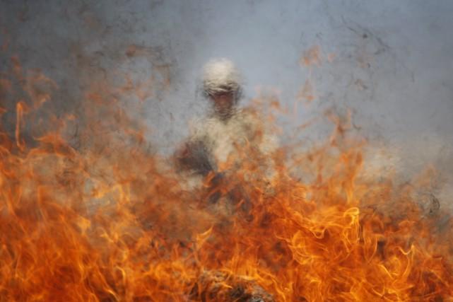 Un soldat mexicain supervise la destruction de marijuana... (ARCHIVES REUTERS)
