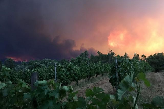 Le feu s'est déclarédans la région de Leiria,... (Photo Axel Bugge, REUTERS)