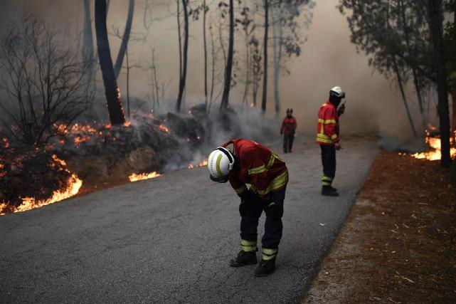 Le feu de forêt s'est déclarédans la région... (photo FRANCISCO LEONG, archives AFP)