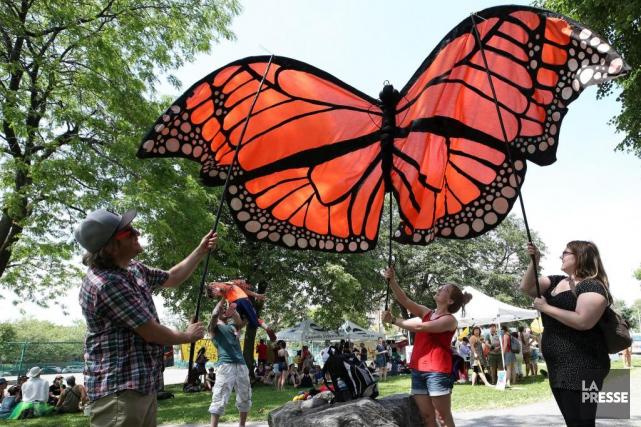 Le monarque, insecte migrateur, a été utilisé pour... (PHOTO ROBERT SKINNER, LA PRESSE)