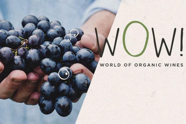 Preuve de leur montée en puissance et en goût, les vins bio font pour la... (CAPTURE D'ÉCRAN)