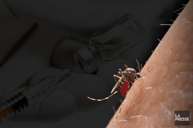Vaccins, filets, moustiques génétiquement modifiés: le monde de la santé... (Photomontage La Presse)