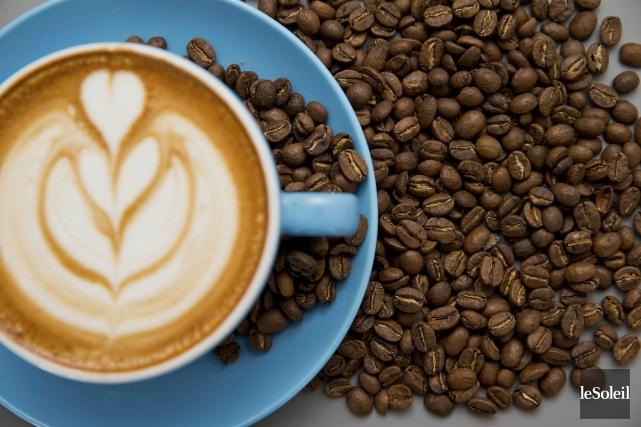 Les surfaces cultivables destinées au café pourraient être... (Photothèque Le Soleil)