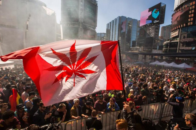 Craignant d'être confrontée à une pénurie de marijuana... (Photo archives La Presse Canadienne)