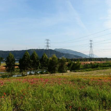 La future ligne électrique Northern Pass se retrouve... (123RF)