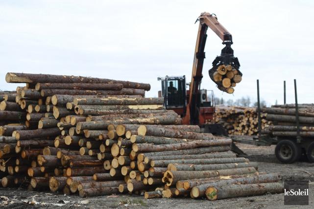 Le conflit du bois d'oeuvre existait avant Trump,... (Photothèque Le Soleil)