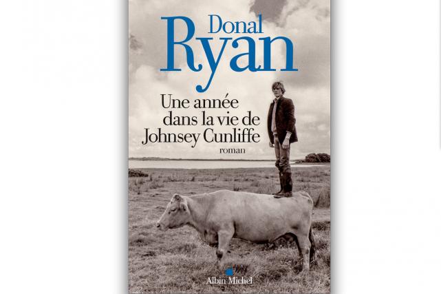 Donal Ryan,Une année dans la vie de Johnsey...