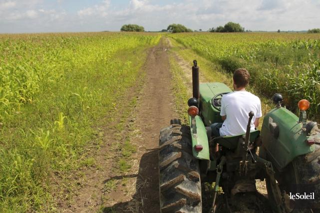 L'objectif du Partenariat canadien pour l'agriculture est d'aider... (Photothèque Le Soleil)