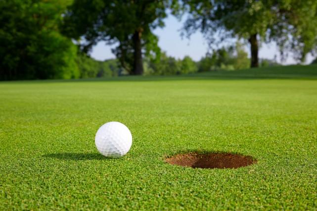 Le porte-couleurs du Club de golf Lac-Saint-Jean a... (Photo 123RF)