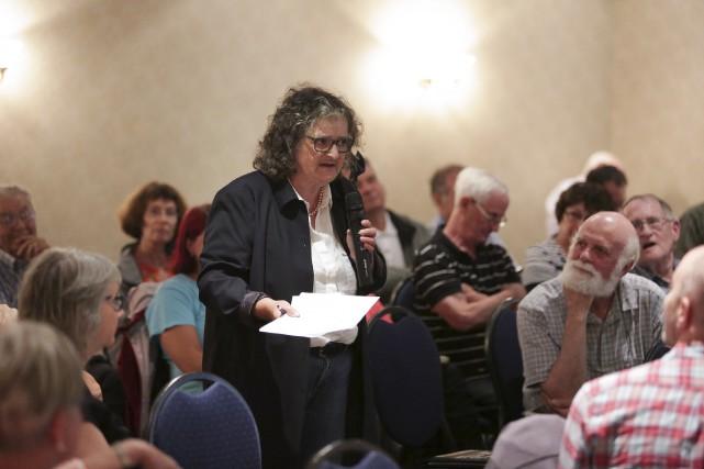 Directrice générale de l'organisme Bleu Massawipi, Michèle Gérin... (Spectre média, René Marquis)