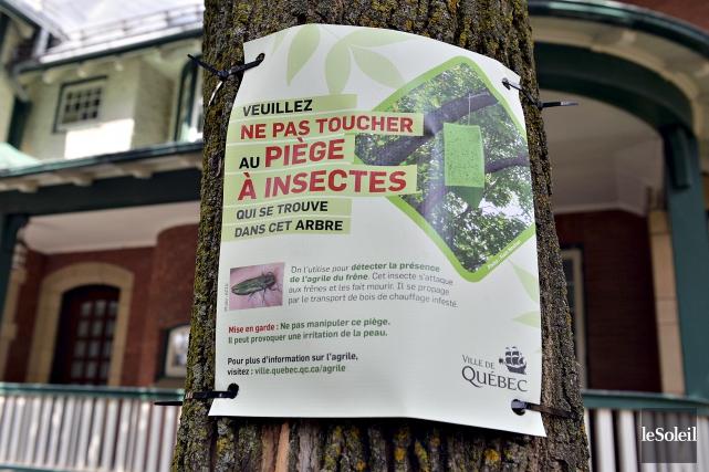 La Ville de Québec a posé des affiches... (Le Soleil, Patrice Laroche)