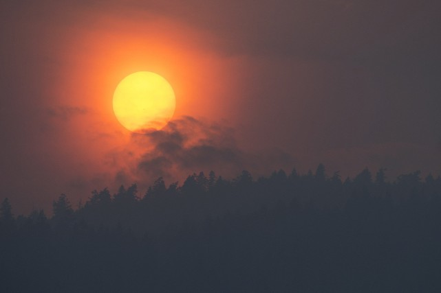 Environ 680 incendies ont ravagé 1110 kilomètres carrés... (Photo Jonathan Hayward, La Presse canadienne)