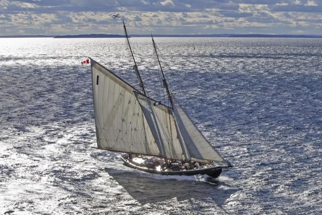 Le Bluenose II... (Sail Training International)