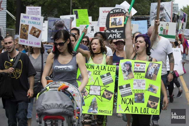 Plusieurs affiches dénonçaient le projet de loi 128... (PHOTO ROBERT SKINNER, LA PRESSE)