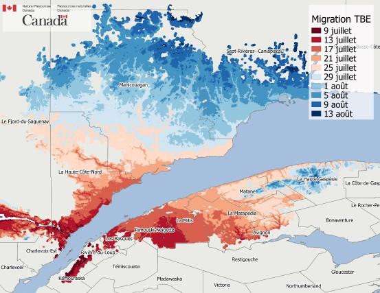 Cette image tirée du nouveau logiciel du Centre... (fournie par Ressources Naturelles Canada)